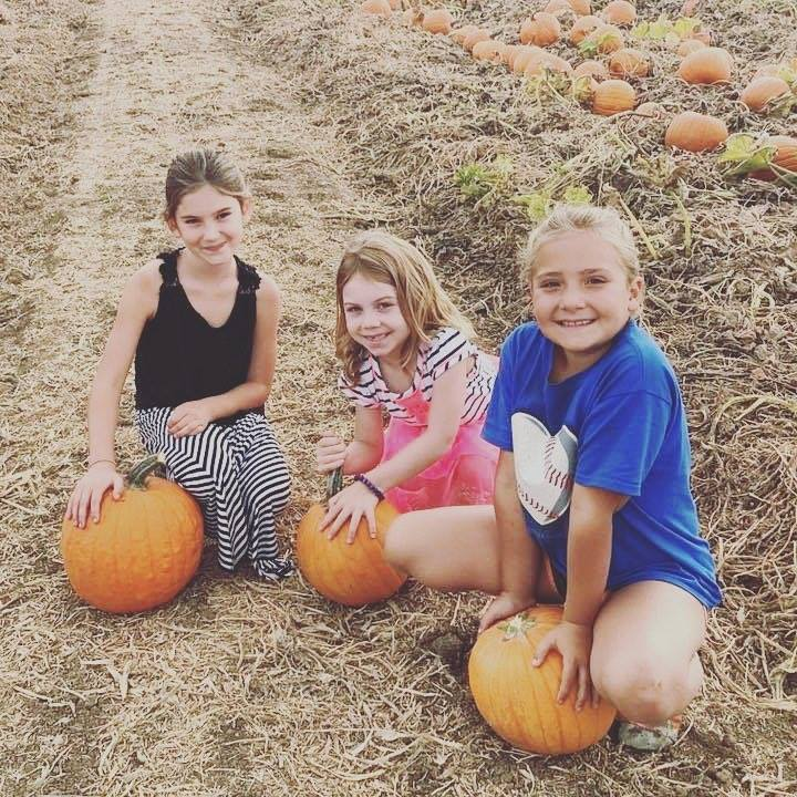 G & S Farms- Fall Activities