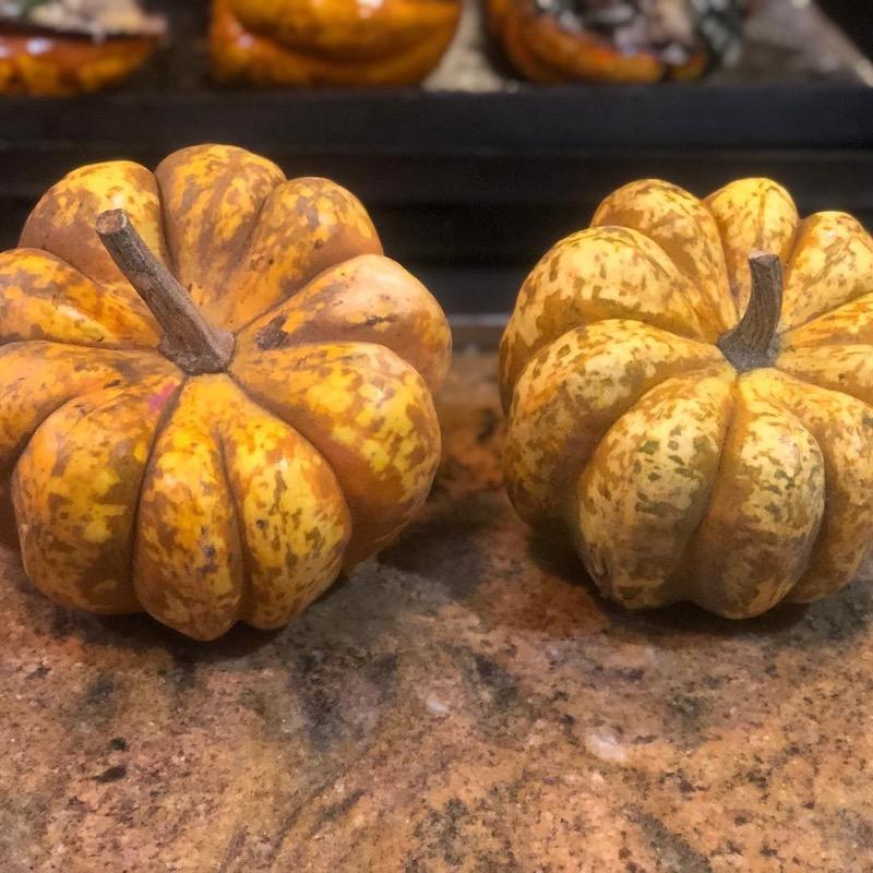 Sweet Dumpling - Harvest For You Brentwood
