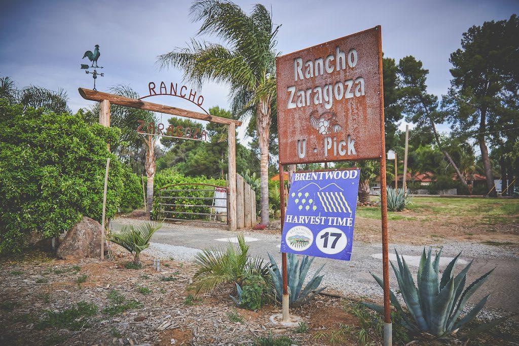 Rancho<a href=