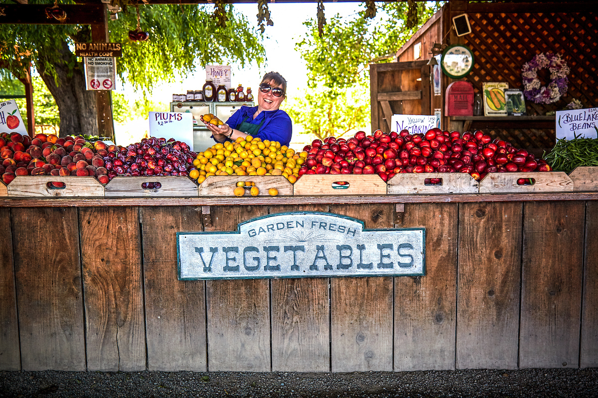 Harvest Time Farm Stands