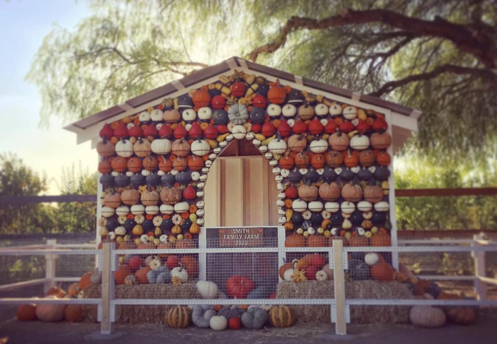 Smith Family Farm - Fall Harvest