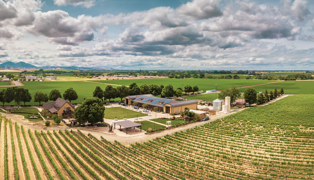Campos Family Vineyards - Aerial View of the Vineyard