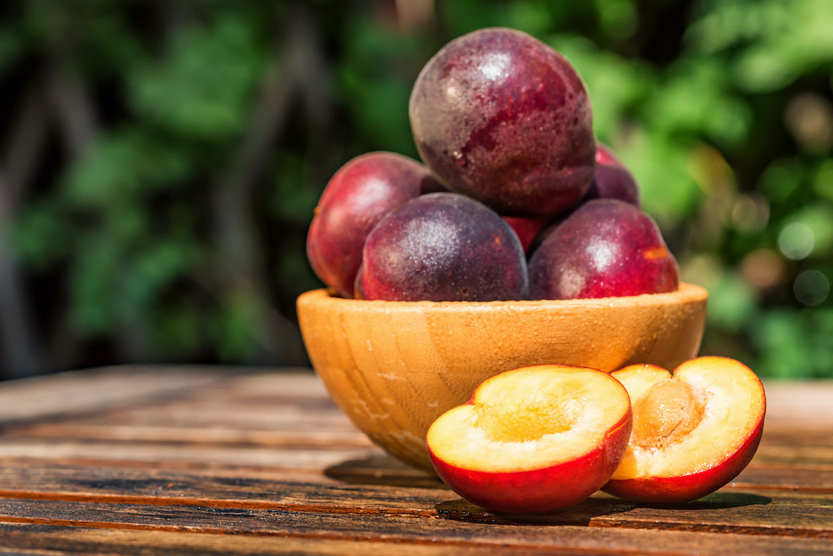 Pluots in a Bowl